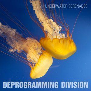 Deprogramming Division
