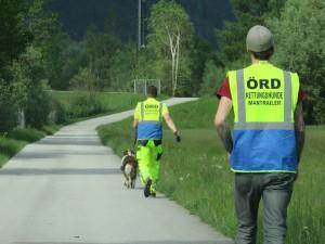 Mantrailing mit Rettungshunden