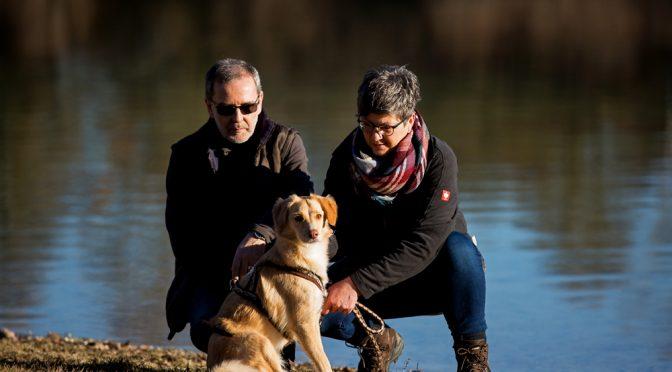 App-gestütztes Hundetraining