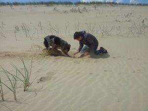 Tucker mit Sohn am Strand