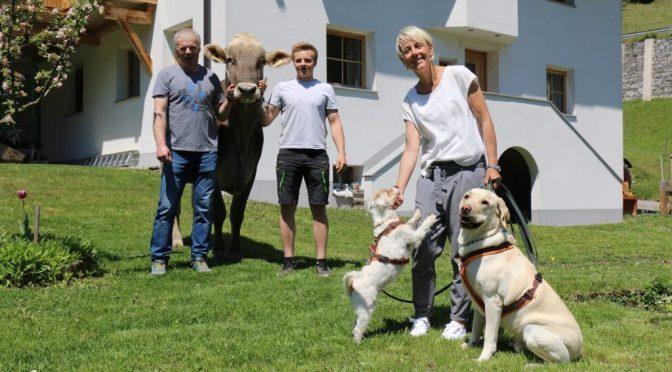 Hundehaltung quo vadis – am Beispiel Tirol