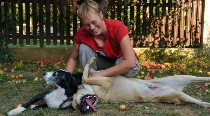 Worauf es ankommt zwischen Mensch und Hund