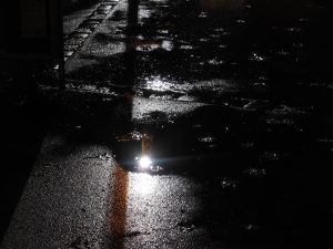 Der vielen Totendichter Lichter