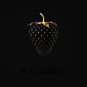 Blackberry by Xö
