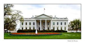 Washington-White-House