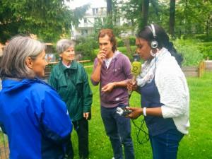 Wildkräuter sammeln im Interkulturellen Stadtteilgarten Itzling